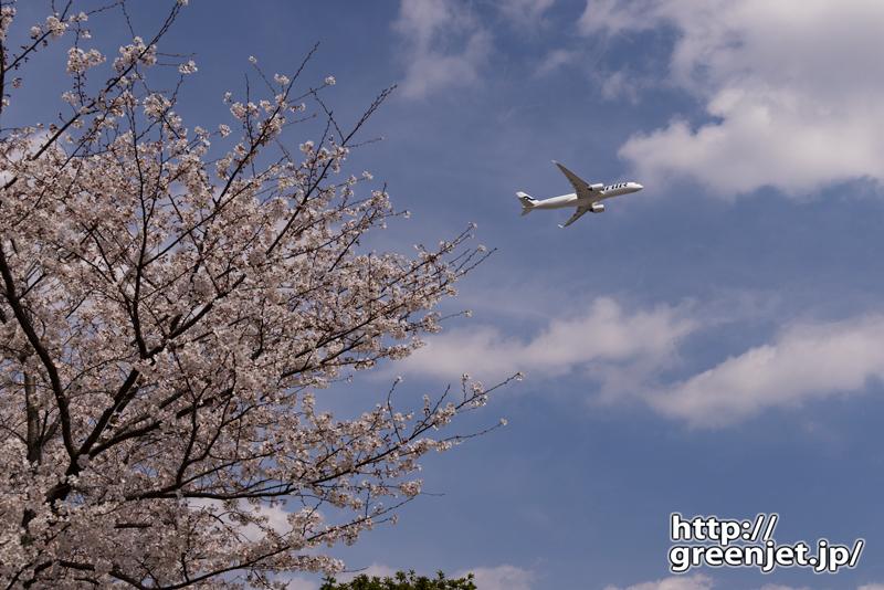 成田で飛行機~さくらの丘の片隅から