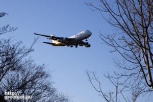 成田で飛行機~ジャンボの最高の角度は..