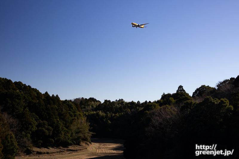 成田で飛行機~深ーい谷と黄色い飛行機