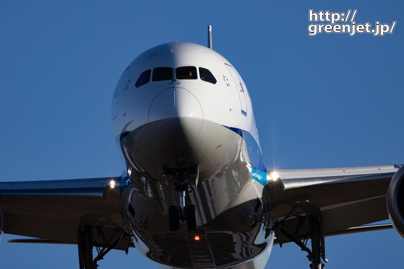 成田で飛行機~B787のドアップはどうよ!