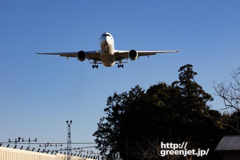 成田で飛行機~A350を正面から狙う