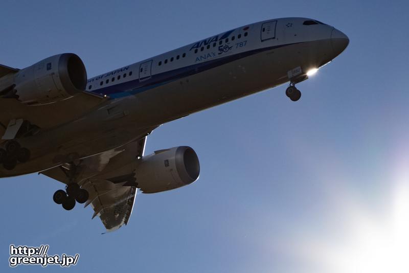 成田で飛行機~日中に逆光で狙うB787