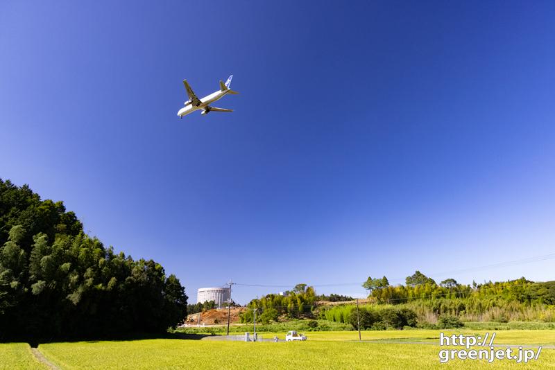 成田で飛行機~夏の稲田から見る飛行機風景