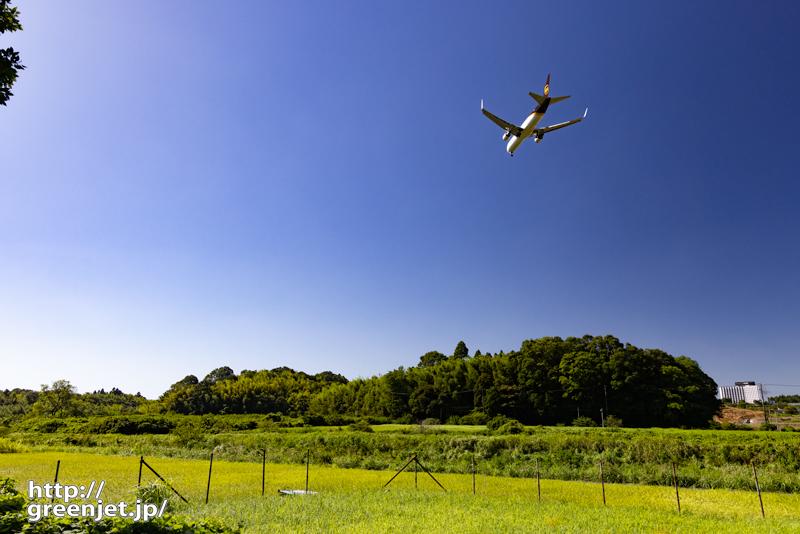 成田で飛行機~田園でウィングレット付き