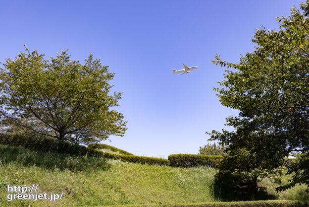 成田で飛行機~さくらの丘の駐車場からフィン!
