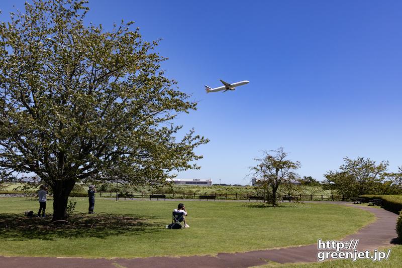 成田で飛行機~大木の向こうからエールフランス