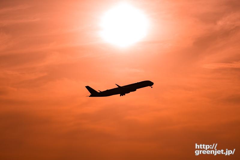 羽田で飛行機~夕景バックにエアバスA350