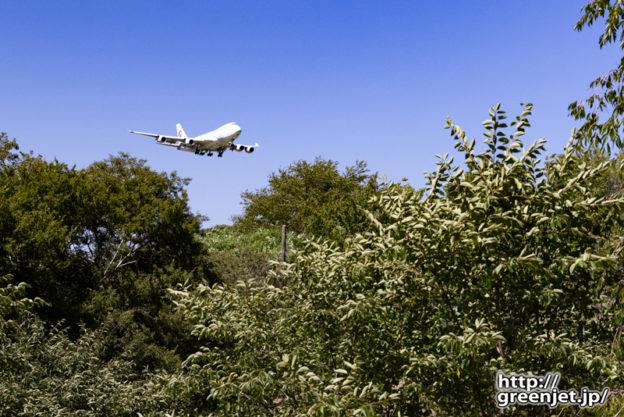 成田で飛行機~さくらの山駐車場からジャンボ
