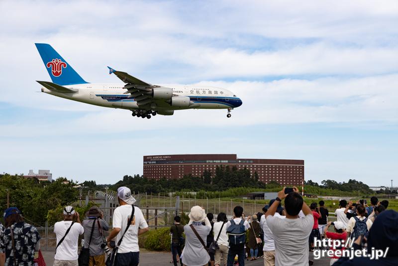 成田で飛行機~水曜日の怪鳥を定番ポイントで!